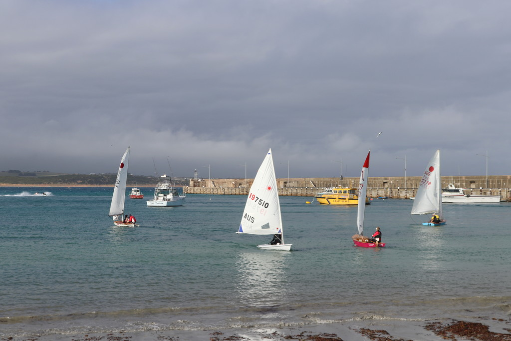 The little yacht race by gilbertwood
