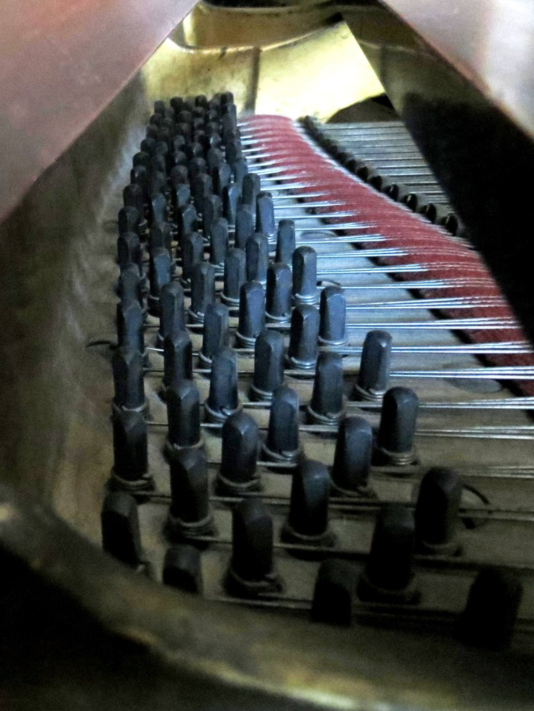 Tuning Pins by grammyn