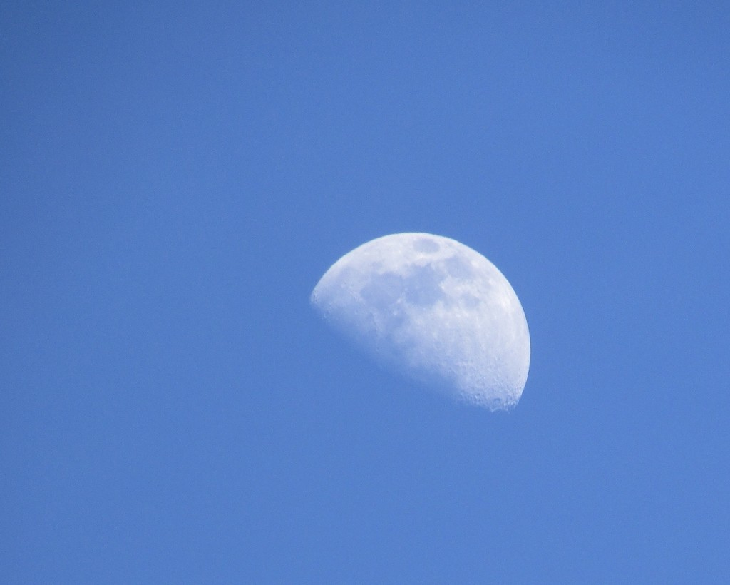 Moon by julie