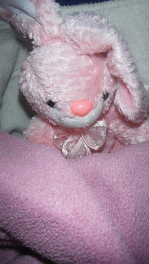 Pink Bunny for Sunday by spanishliz