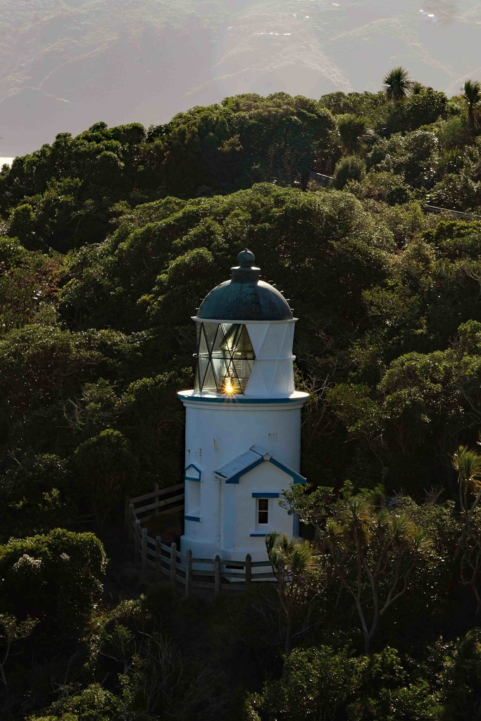 Somes/Matiu Island Lighthouse by maureenpp