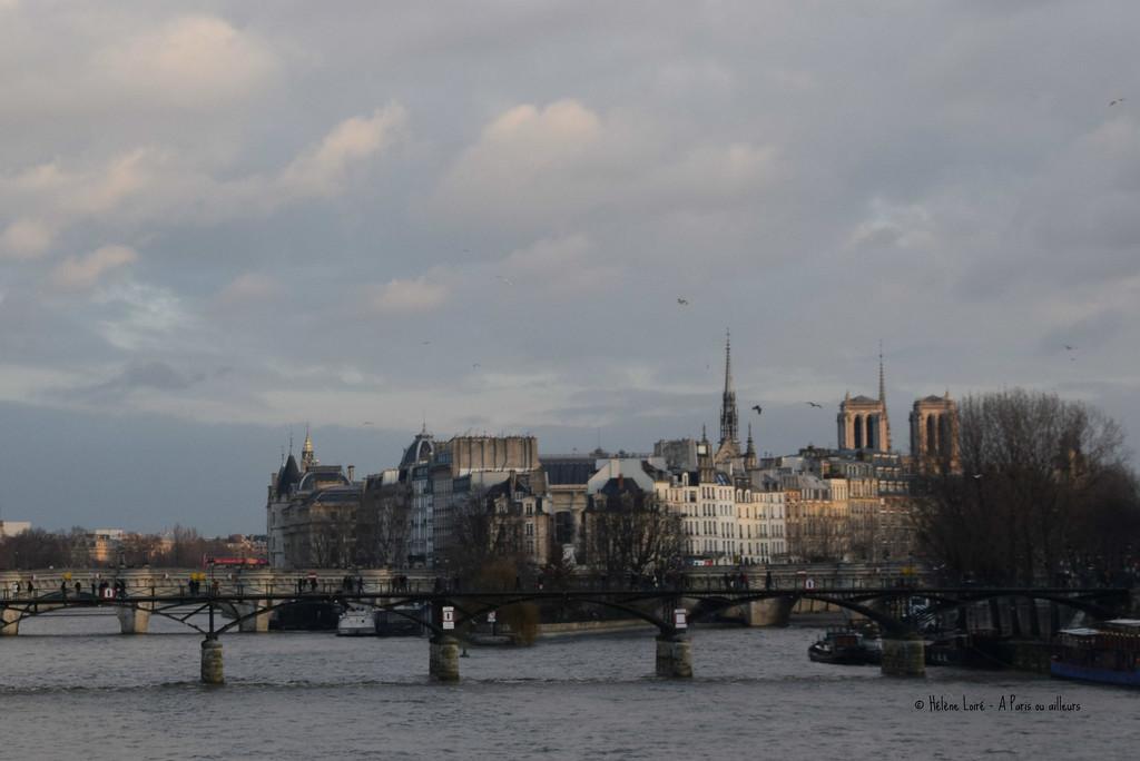 my last picture of Notre Dame by parisouailleurs