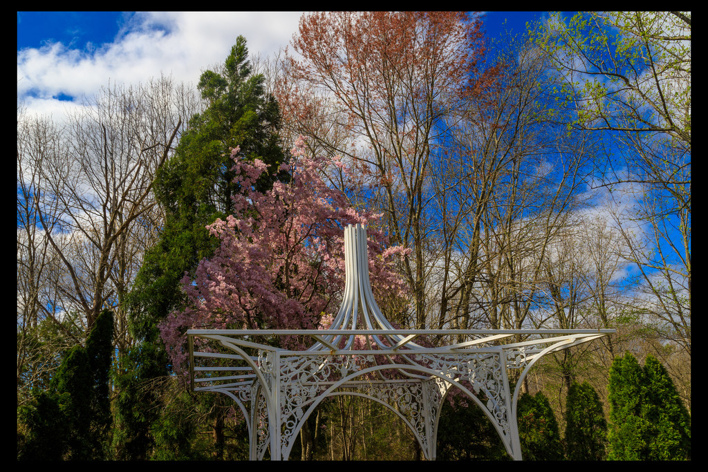 Beautiful Spring Day by hjbenson