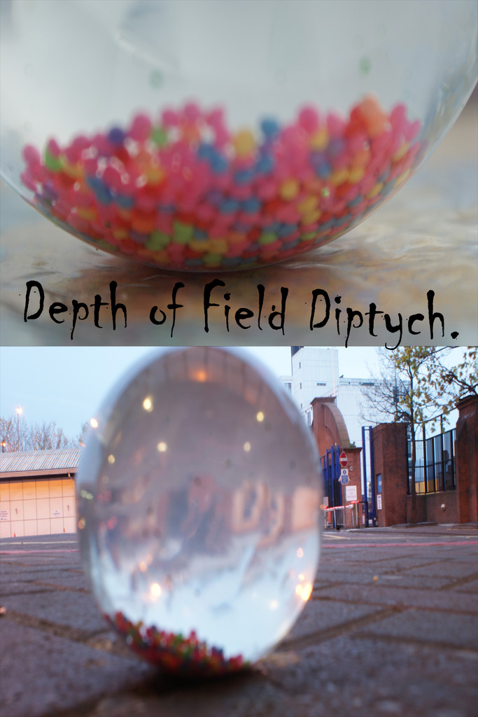 Depth of Field Diptych. by la_photographic