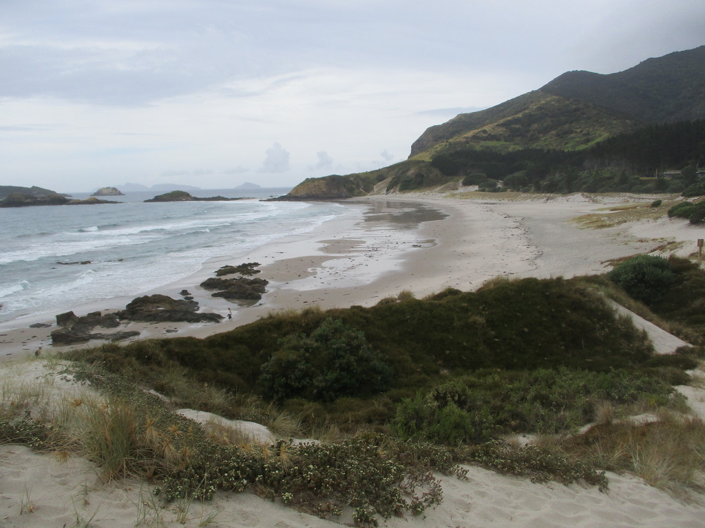 Ocean Beach  Northland  NZ by 777margo