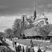 In Honour of Notre-Dame de Paris