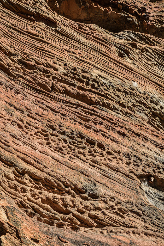 Patterns in the Pilliga sandstone by jeneurell