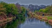 13th Apr 2019 - Nutbrook Canal