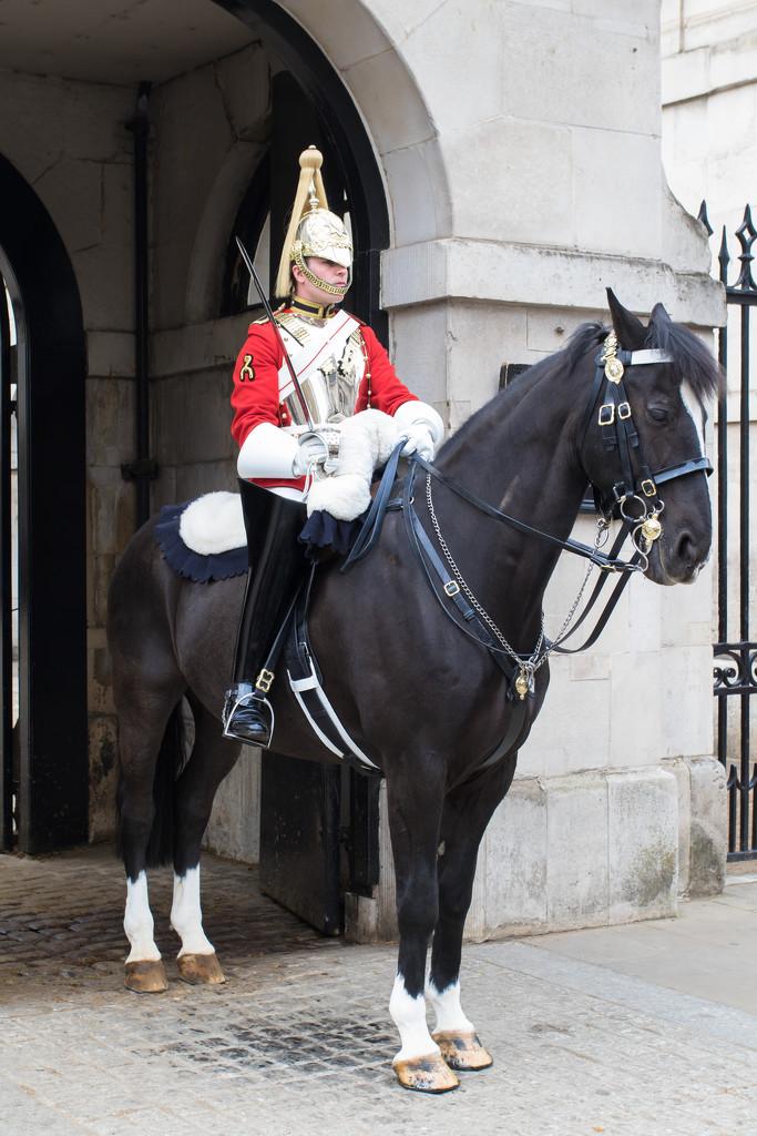 Horse Guards Parade by peadar