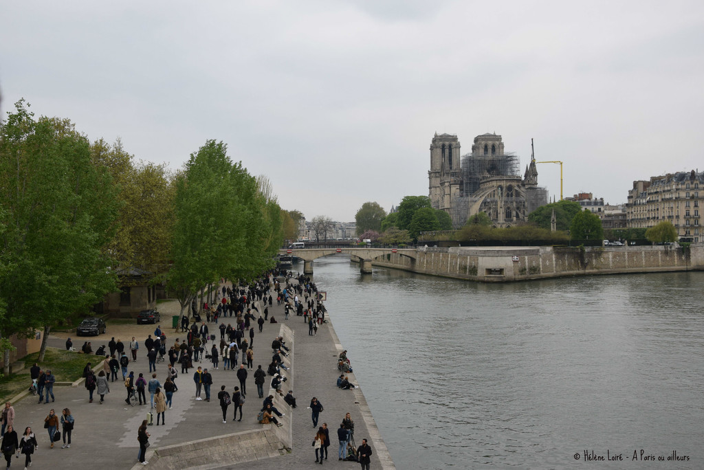 thousands of incredulous people came to see Notre Dame by parisouailleurs