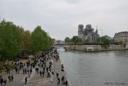 16th Apr 2019 - thousands of incredulous people came to see Notre Dame