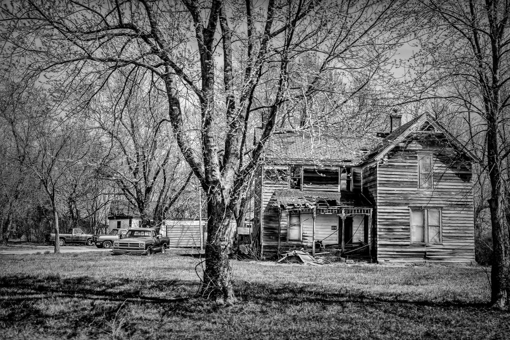 the homestead by samae