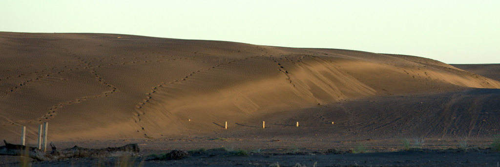 The dunes by dide