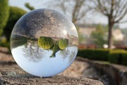 17th Apr 2019 - Lensball for 30 days