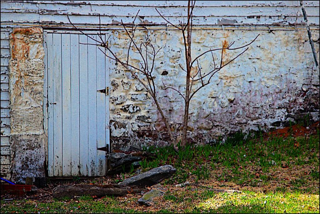 Old Farmhouse Cellar Door by olivetreeann