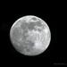 Y10 D107 Moon