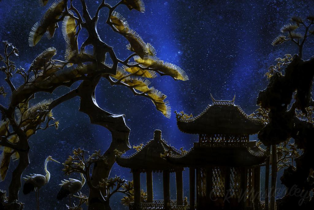 Starry Starry Night by kipper1951