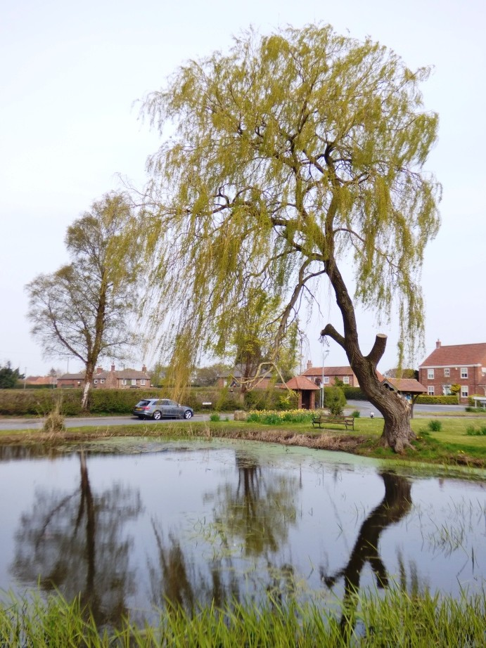 Skipwith Village by fishers