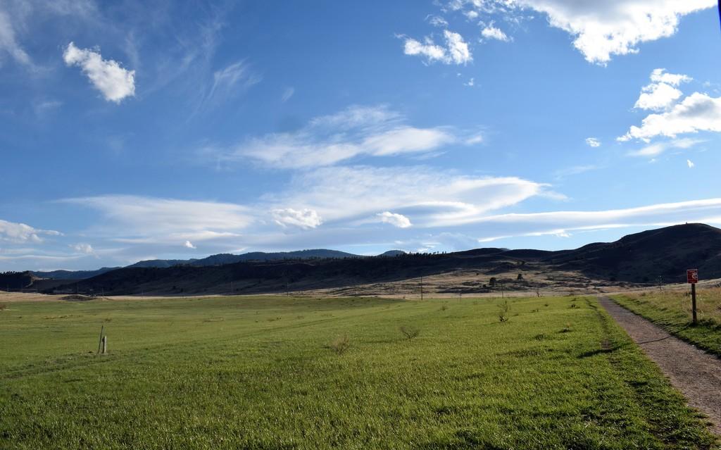 Reservoir Ridge Natural Area by sandlily