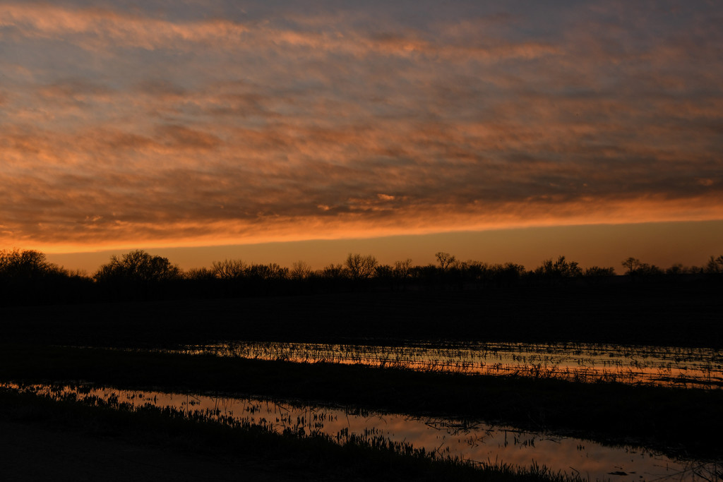 Standing Water with Sunset Reflection by kareenking