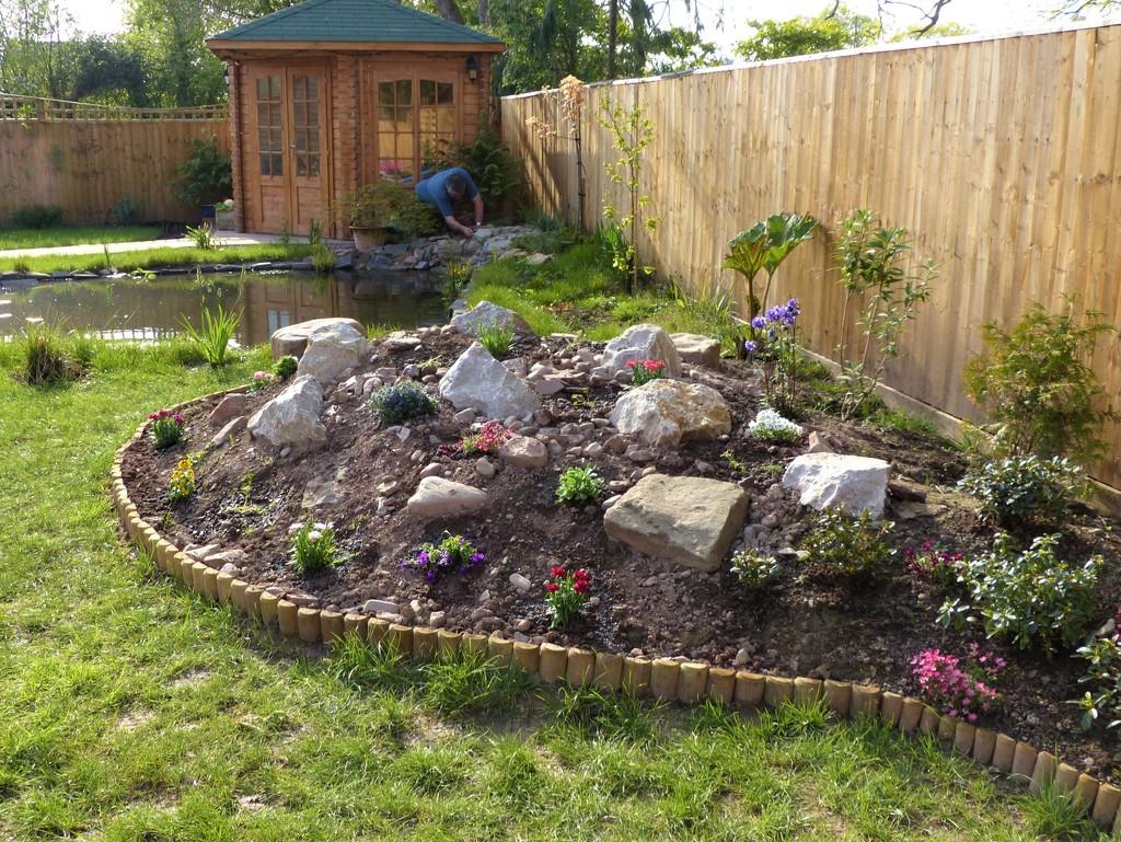 The Rockery has Plants! by susiemc