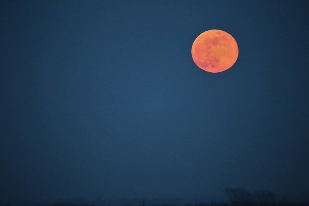Once In A Pink Moon by phil_sandford