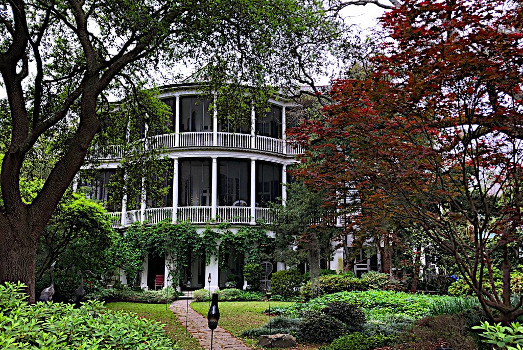 One of my favorite old houses in the historic district.  I photograph it in all seasons of the year. by congaree