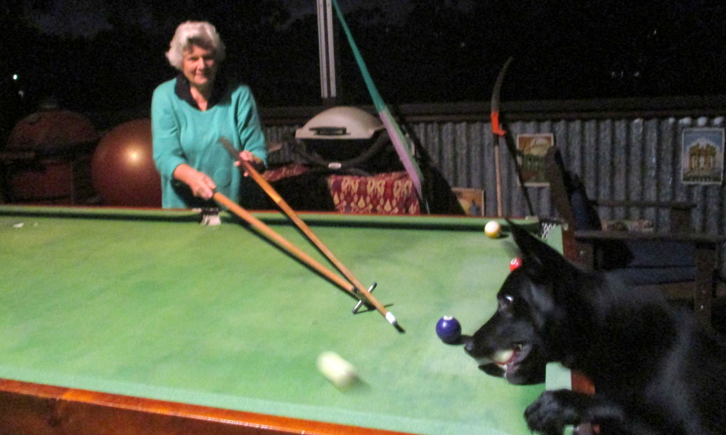 Playing Pool with the dog last night!! by 777margo
