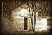 19th Apr 2019 - The Open Door