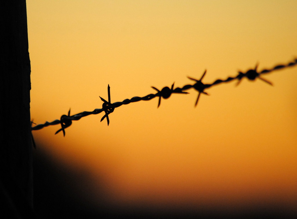 Barbed Wire at Sunset by genealogygenie