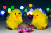 21st Apr 2019 - Happy Easter