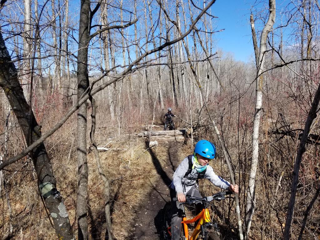 Spring Bikers by schmidt