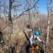 Spring Bikers