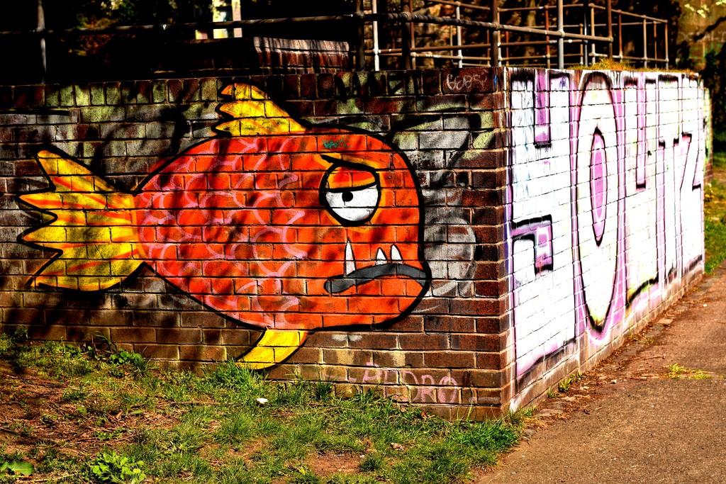 big fish by christophercox