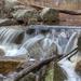 Y10 D111 Flowing Stream