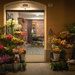 Modena Flower Shop by jyokota