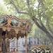 La Belle Epoque Carousel, Avignon