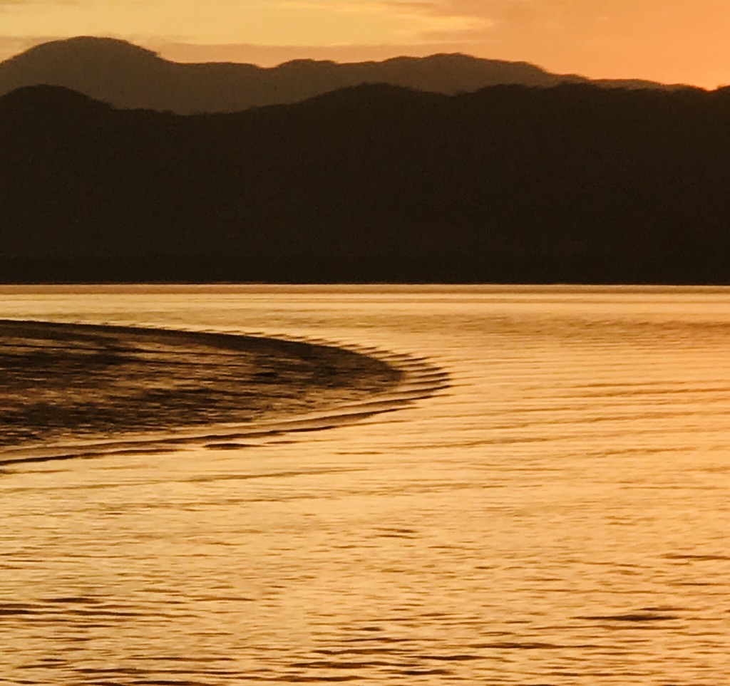 Taken from the vessel Ranui early evening on the Hokianga harbour by Dawn
