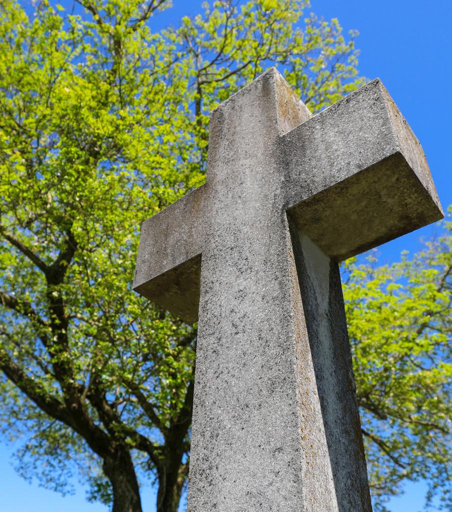 Easter Sunday, April 21, 2019 ✞ by ryanjasonphotography