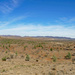 Flinders Range Panorama with Great Wall of China