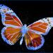 Neon Monarch by olivetreeann