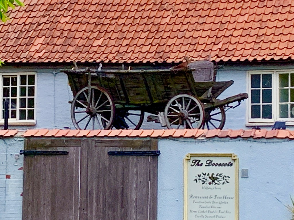 Cart on a Roof by carole_sandford
