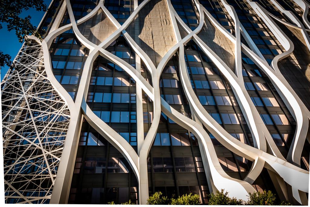 Media 24 building by mv_wolfie