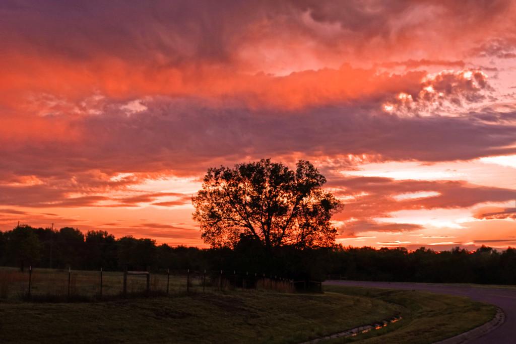 Good Morning, Ozark. by milaniet