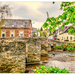 The Packhorse Bridge,Clun,Shropshire by carolmw