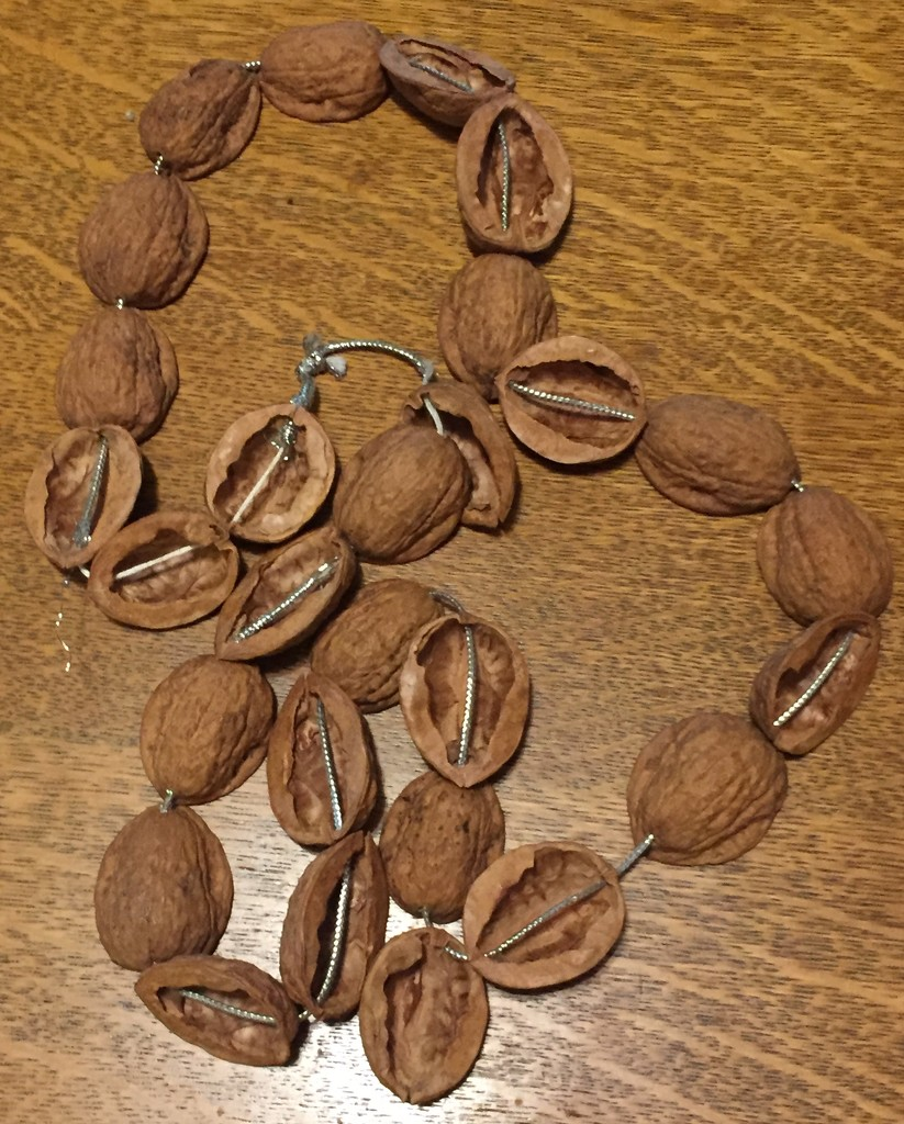 Nut shell necklace  by mcsiegle