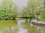 2nd May 2019 - On quiet pond