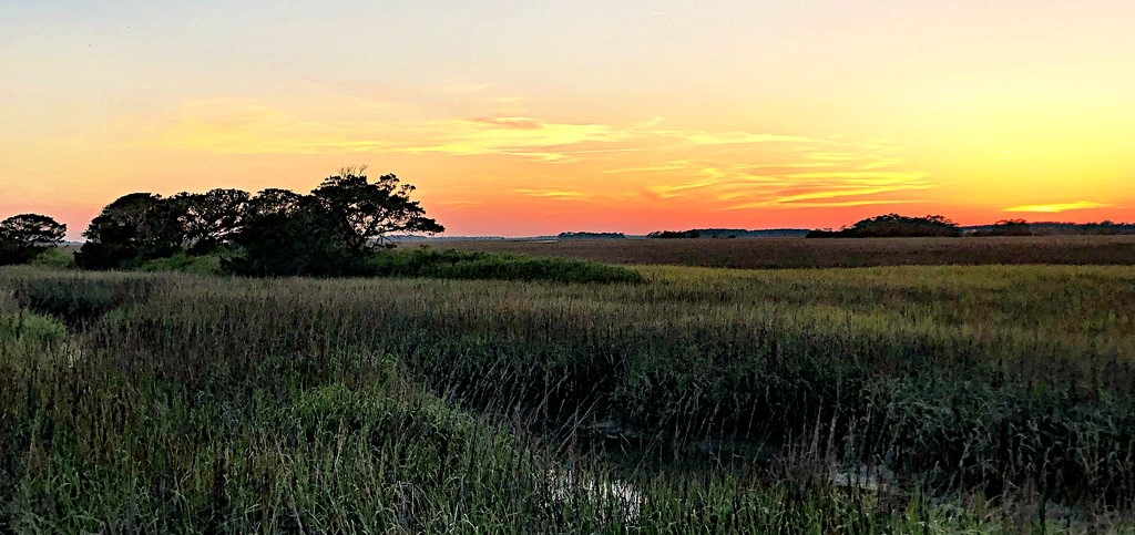 Folly Beach sunset by congaree