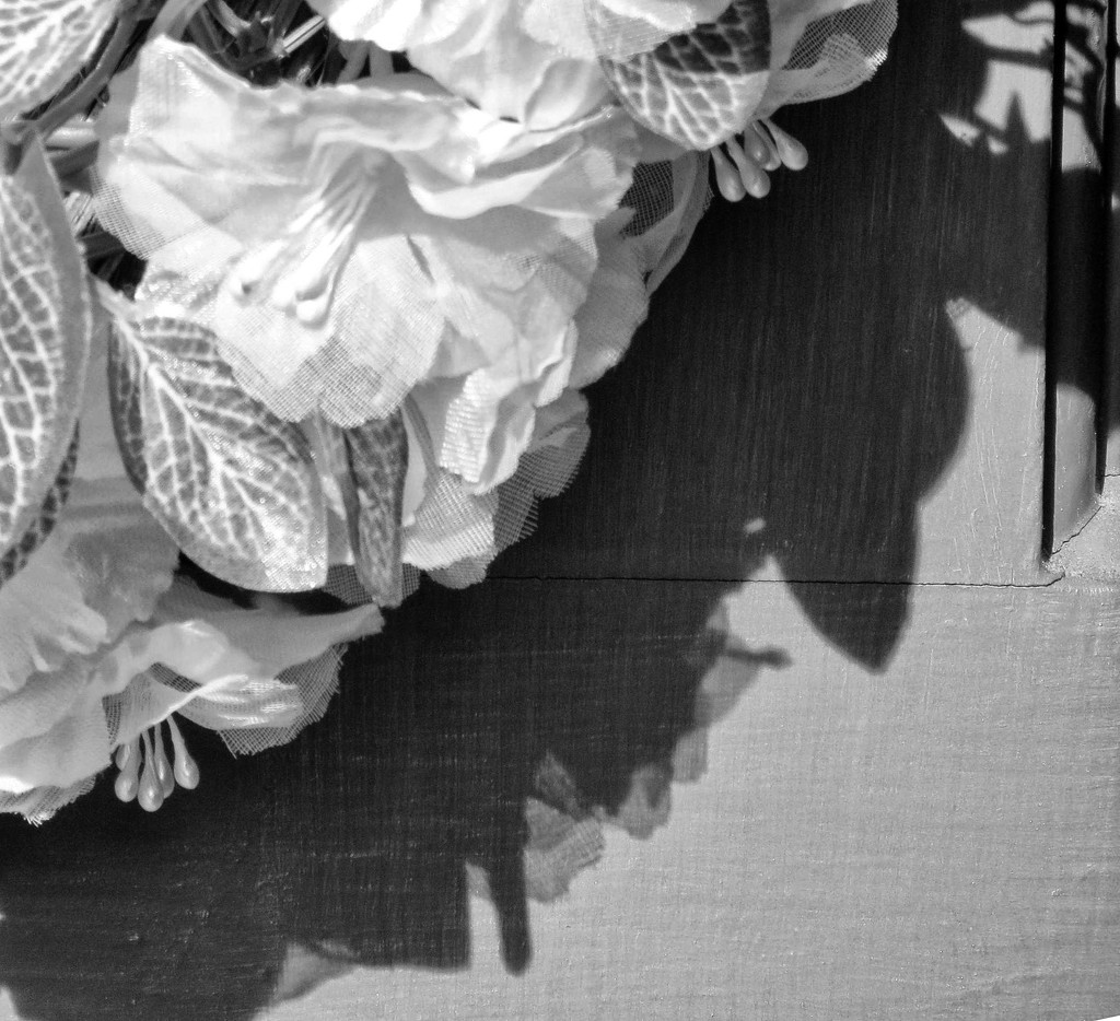 Only A Shadow by grammyn