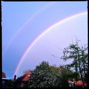 5th May 2019 - Rainbowbow
